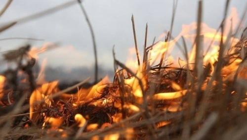 Распоясавшийся огонь. С начала апреля в Миассе зарегистрировано 17 природных пожаров