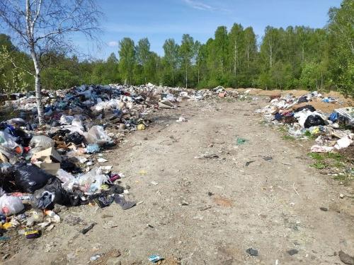 Надолго? Из-под Миасса вывезли 306 тонн мусора